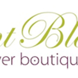 Elegant Blooms Flower Boutique