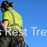 Travelers Rest Tree Service