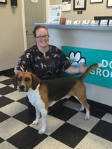 Profile Photos of Dr. Dave's Doggy Daycare, Boarding & Grooming