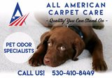 All-American Carpet Care 1343 Gehring Ct.