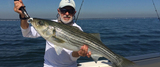 New Album of Hooked on Fishing Charters