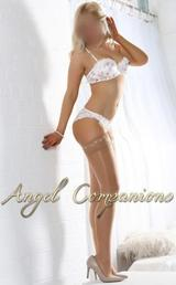 Angel Companions of Angel Companions