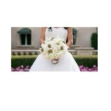 The Best Flowers for Wedding Entourage from River Oaks Plant House