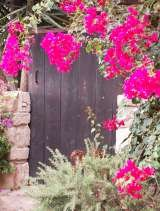 Come into our secret garden Little Lodge Bijou B&B CYPRUS 14 ay minas