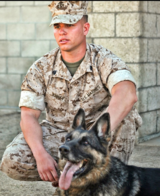 Profile Photos of Remarkable K9