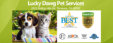 New Album of Lucky Dawg Pet Grooming Salon