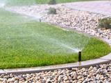 Profile Photos of Lake Nona Lawn Maintenance
