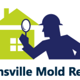 Watkinsville Mold Removal & Testing