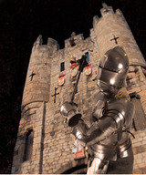 Profile Photos of Henry VII Experience at Micklegate Bar