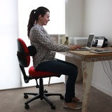 Ergonomic Products of Bad Backs Store