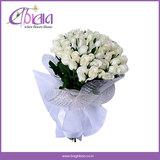 Buy Flowers for Birthday