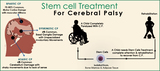 Stem Cell Album of Stem Cell Cure Pvt. Ltd.