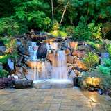 Profile Photos of Alderwood Landscaping