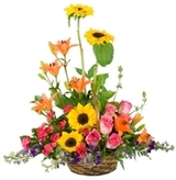 New Album of Same Day Flower Delivery NYC