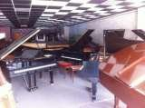 Profile Photos of Piano Movers