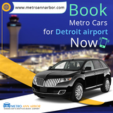 Detroit metro airport cars