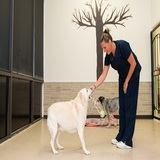 Profile Photos of Valley Veterinary Clinic