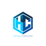 HAMAID Consulting - Digital Marketing Consultant 899 Soft Wind Rd