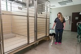 Profile Photos of Lake Elsinore Animal Hospital