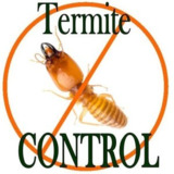 Termite Control Authority