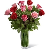 Profile Photos of Same Day Flower Delivery Houston