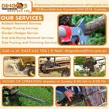 Tree Trimming and Removal Services Corrimal | Dingo's Tree Services