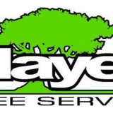 Mayer Tree Services