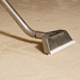 Professional Carpet Cleaning Guys