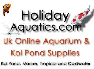 Holiday Aquatics