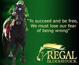 Profile Photos of Regal Bloodstock