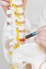 herniated disc-back pain Better Health Chiropractic & Physical Rehab 1301 S Seward Meridian Pkwy Suite G