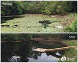 Profile Photos of Platinum Ponds & Lake Management