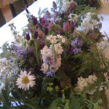 Flowers for All Occasions in Tetbury,UK : Twig of Tetbury