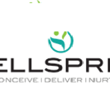 Top  ivf Treatment in Bangalore | wellspringhospitals