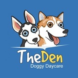 The Den Doggy Daycare 5325 Harvester Road