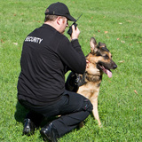 Profile Photos of ICS Protective Services