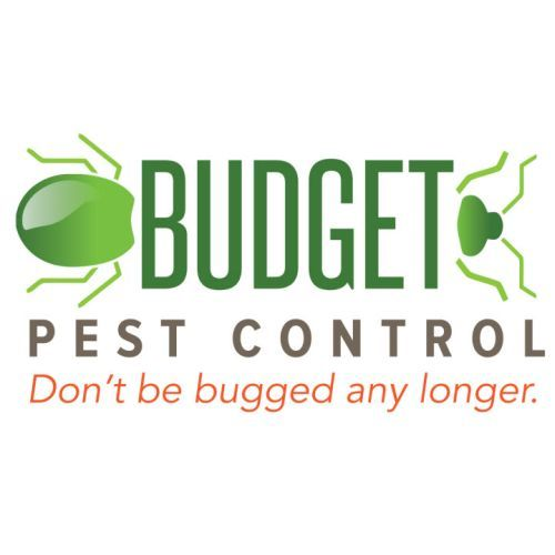 Profile Photos of Budget Pest Control, Inc. 548 East 61st Street - Photo 11 of 12