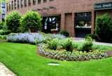 New Album of Indianapolis Commercial Landscape Management