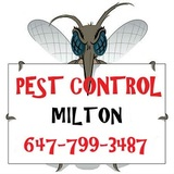 Profile Photos of GTA Toronto Pest Control – Milton