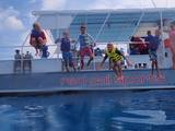 Profile Photos of Red Sail Cayman