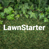 LawnStarter Lawn Care Service