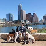 Walk! ATX Pet Care, Austin