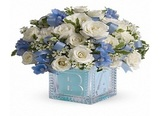 New Album of Flowers Delivery Inc.