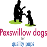 Pexswillow Dogs