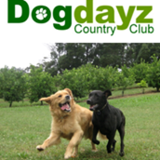 Dogdayz Country Clubs
