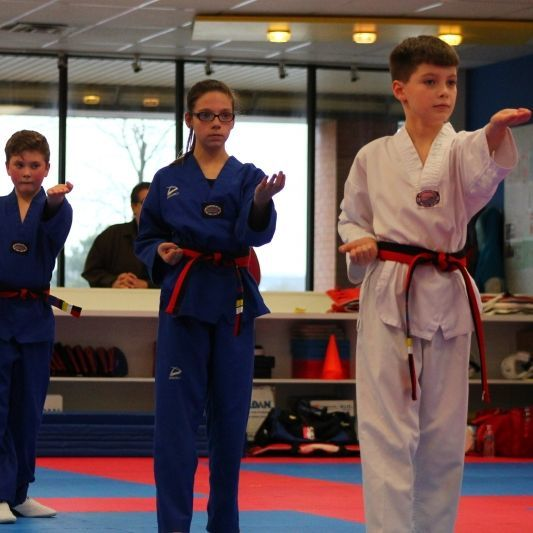 Profile Photos of World Champion TKD Academy 4840 Everhard Rd NW - Photo 3 of 5