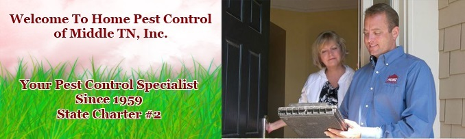 Profile Photos of Home Pest Control of Middle TN, Inc. 2841 Lebanon Pike - Photo 3 of 3