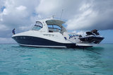Profile Photos of Cayman Watersports