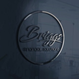 Briggs Financial Solutions LLC