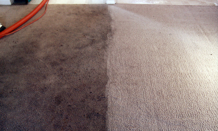 New Album of Carpet Bright UK - Cirencester Further Barton Lodge - Photo 6 of 32